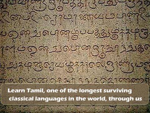 legitimate meaning in tamil